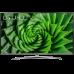 TELEVISÃO LED LG 43UN81006LB ULTRA HD - 4K